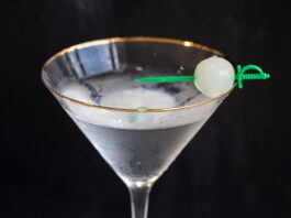 Gibson Cocktail